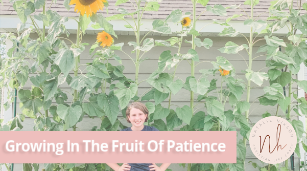 A quick read on growing the fruit of patience in your motherhood journey!
